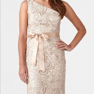 Adrianna Papell Evening Lace Illusion Dress